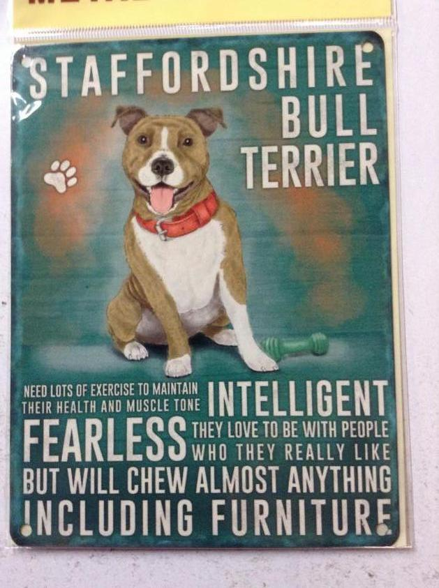 Staffordshire Bull Terrier Traits Metal Sign