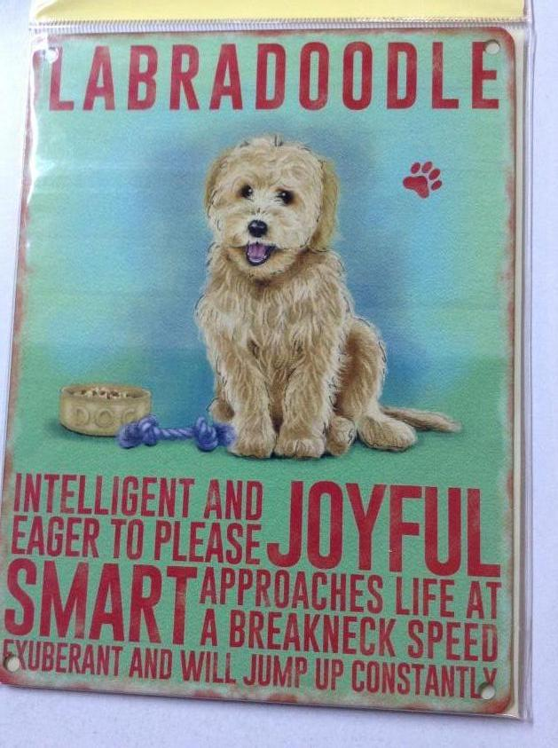 Labradoodle Dog Traits Metal Sign