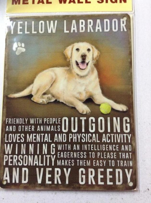 Yellow Labrador Dog Metal Sign