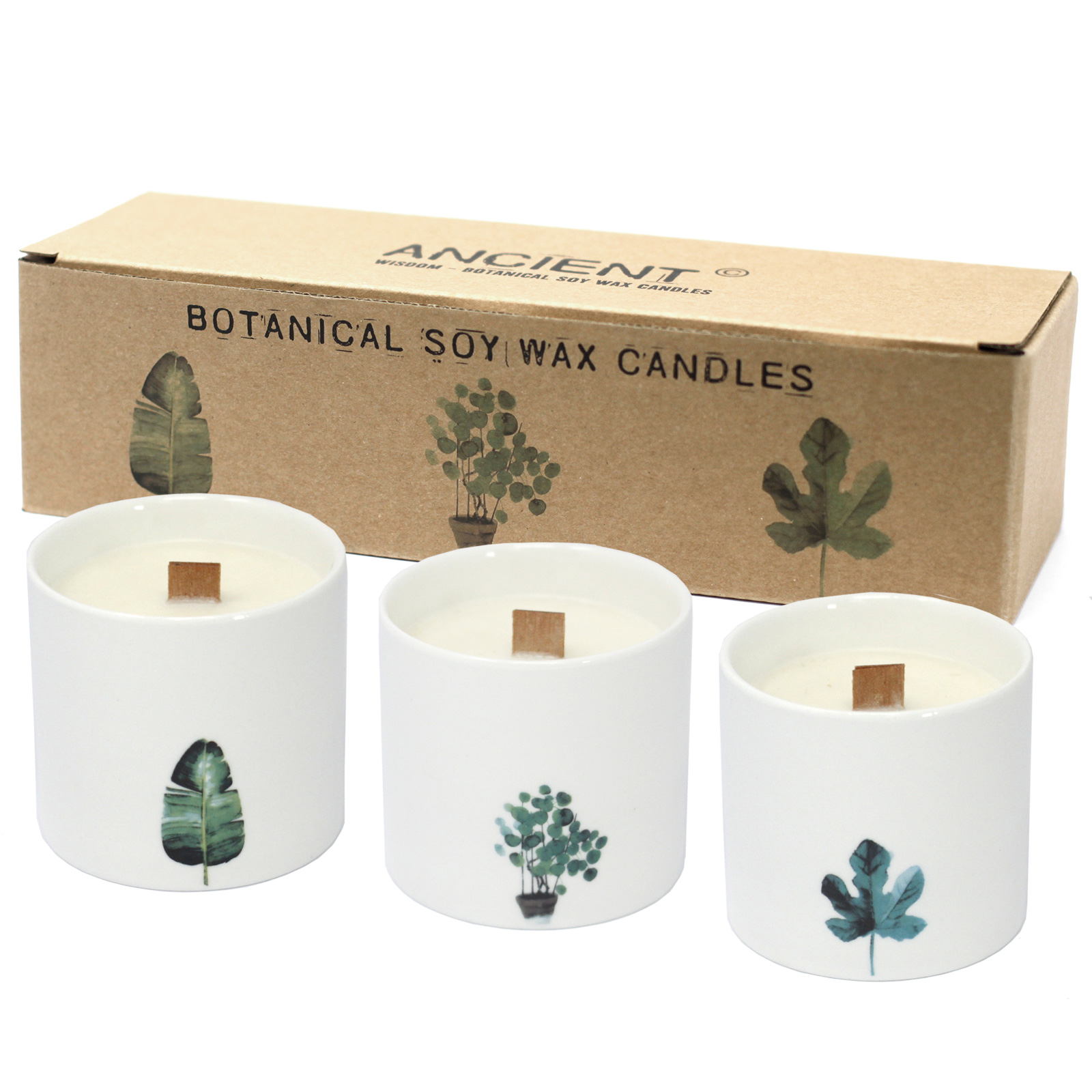 Pack of 3 Large Botanical Candles - Victorian Peony