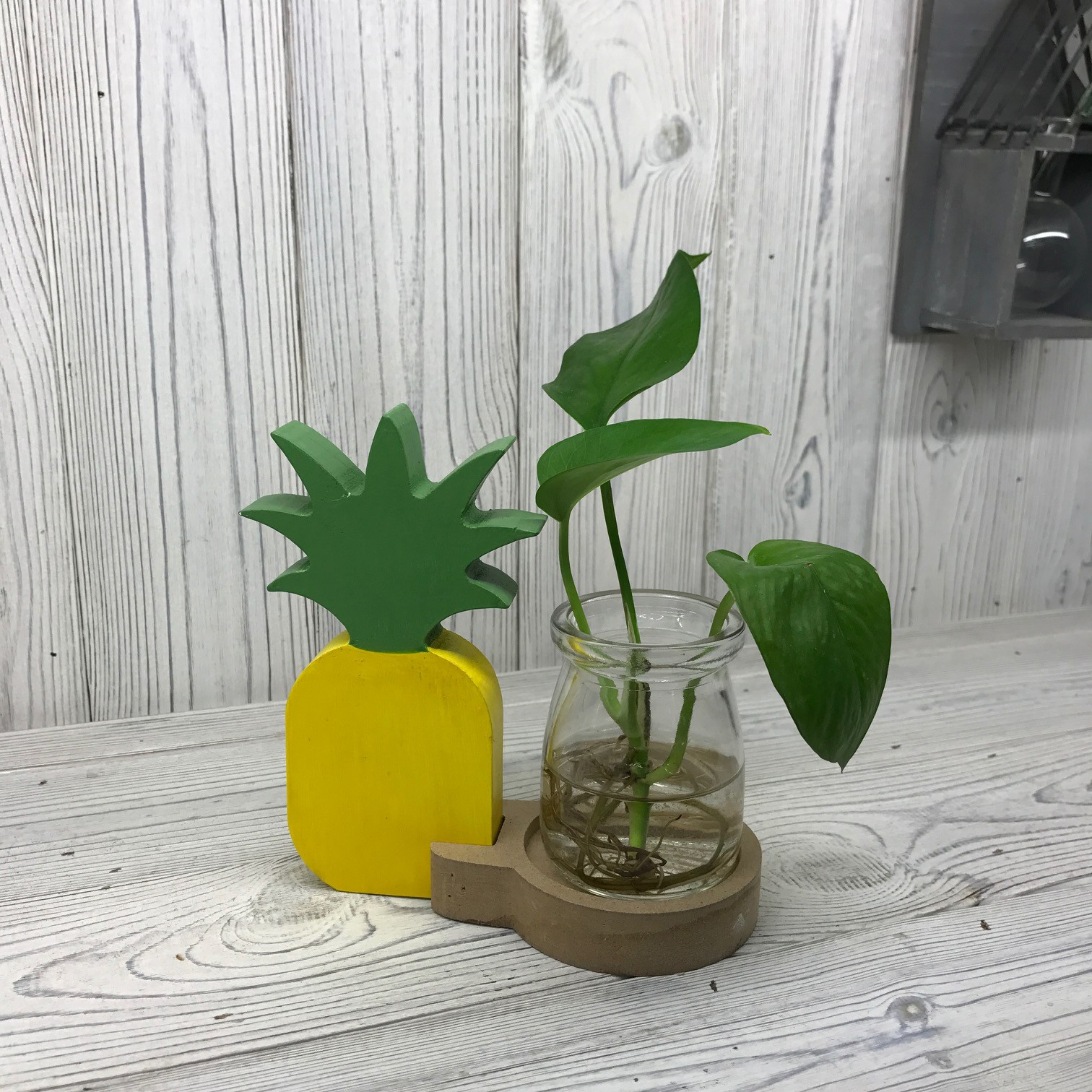 Hydroponic Home Decor - Pineapple Pot