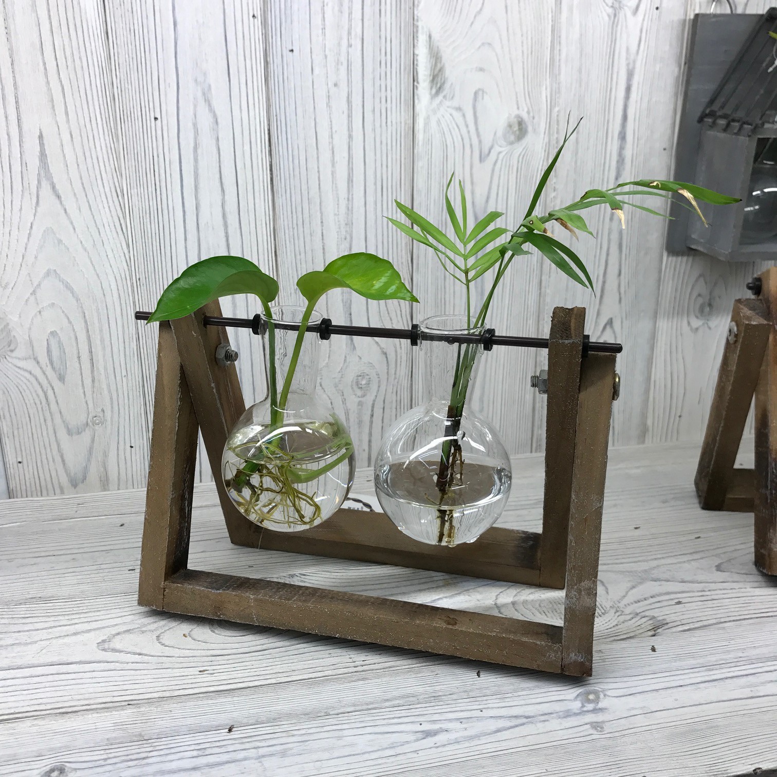 Hydroponic Home D�cor - Two Pot Wooden Stand