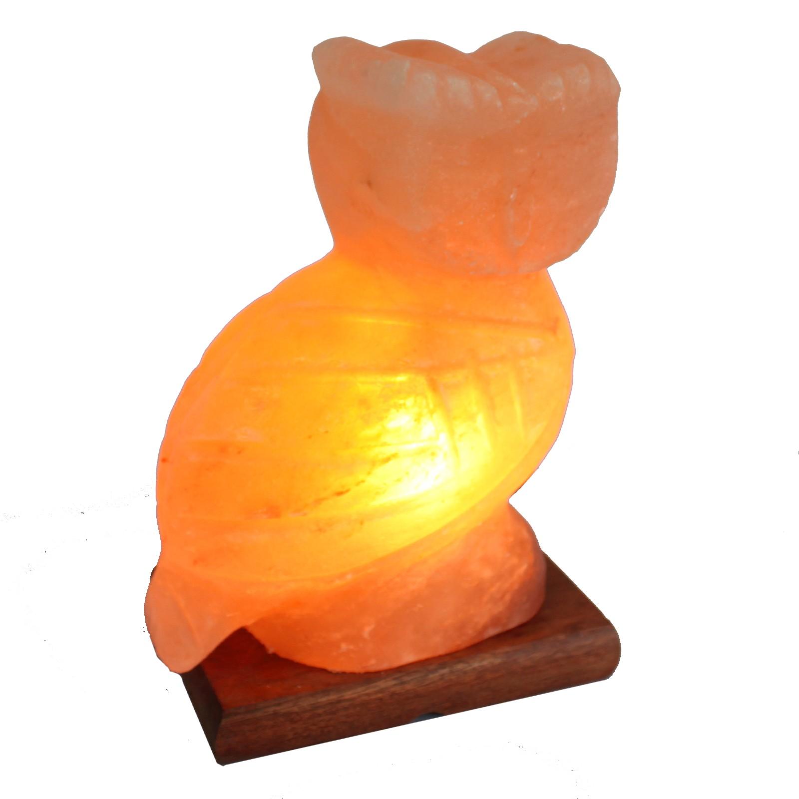 Animal salt lamp - Owl 2-3kg