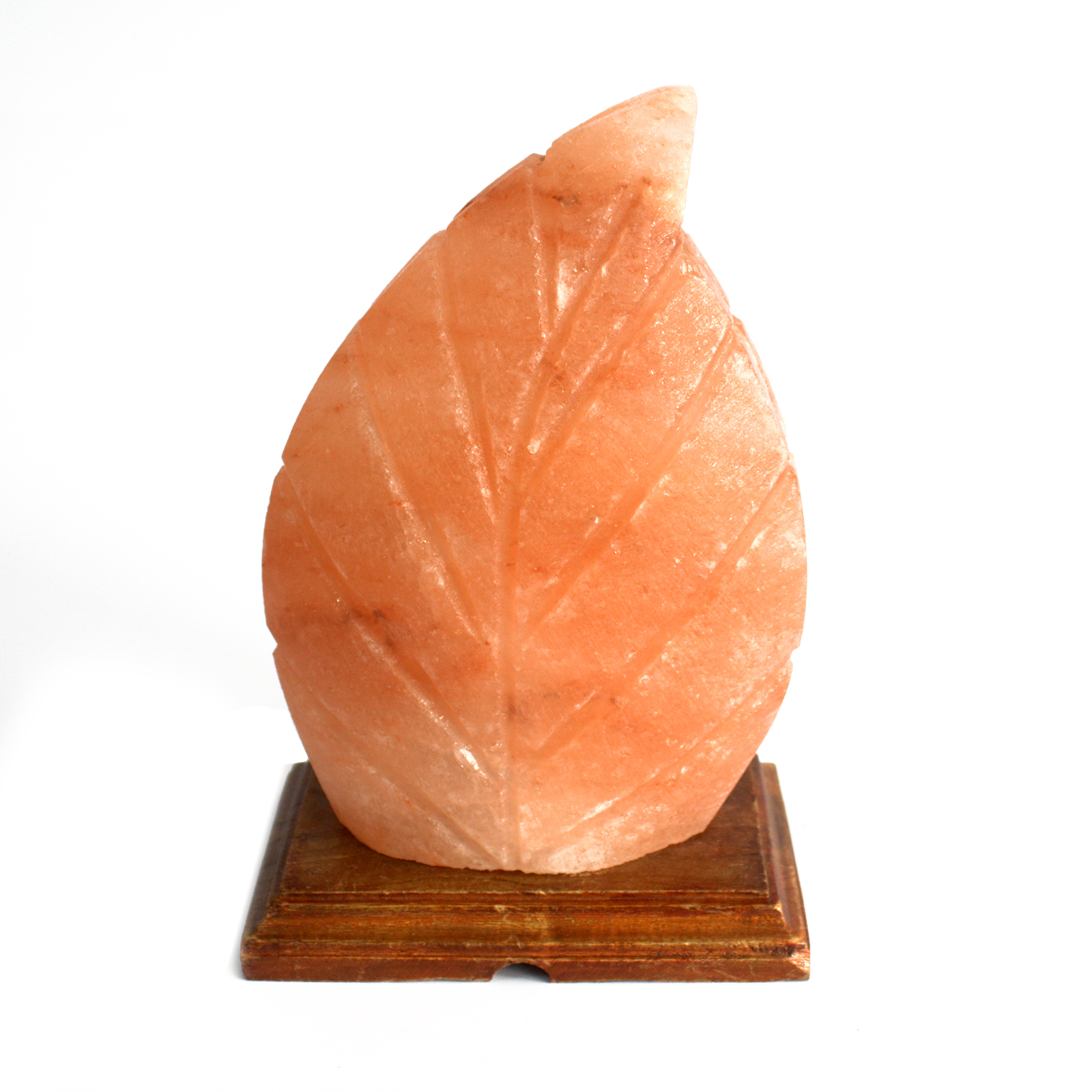Shape Salt Lamp - Fern
