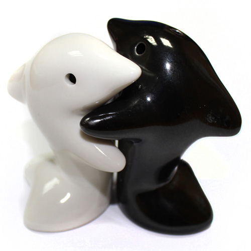 Salt & Pepper - Hugging Dolphins B&W