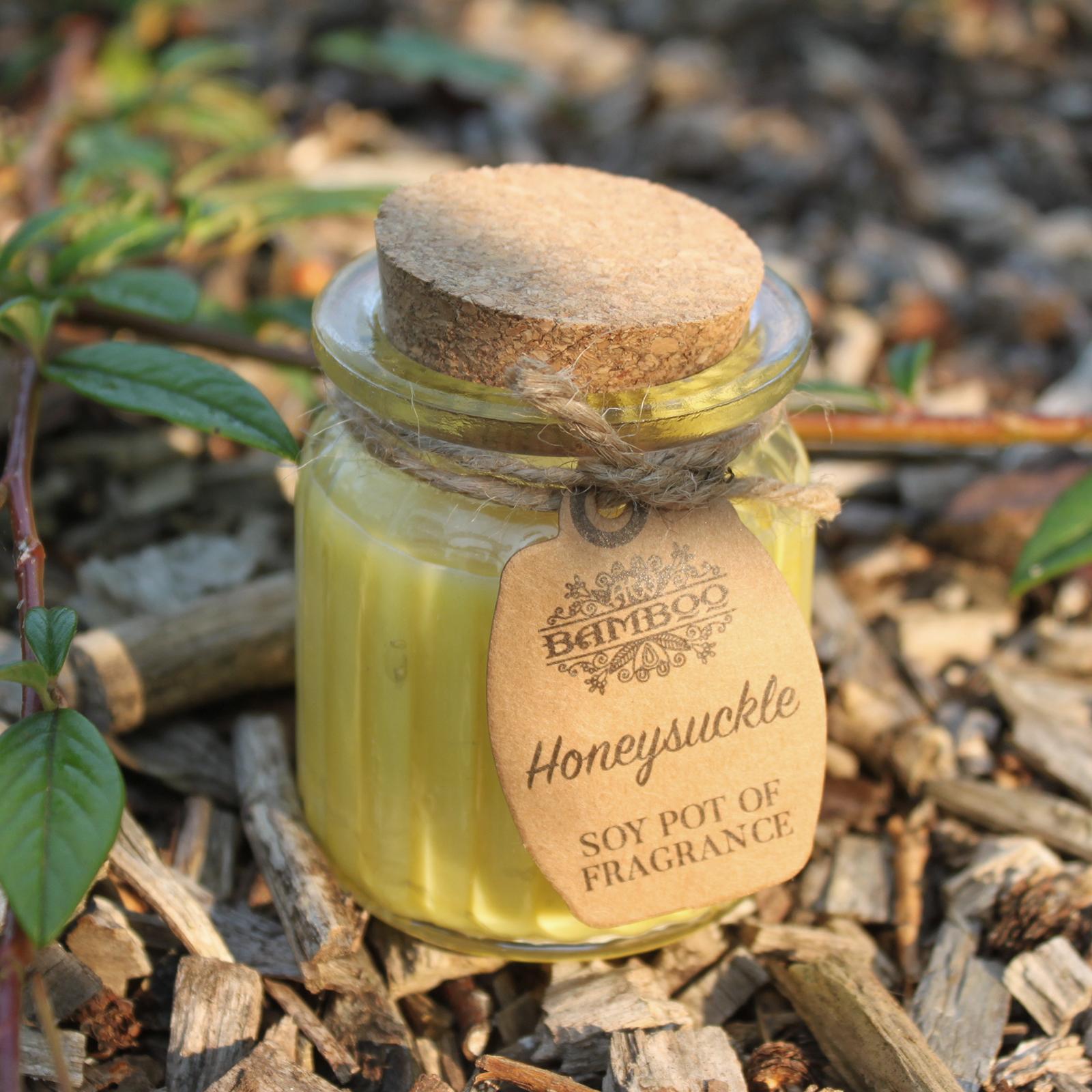 2x Honeysuckle Soy Pot of Fragrance Candles
