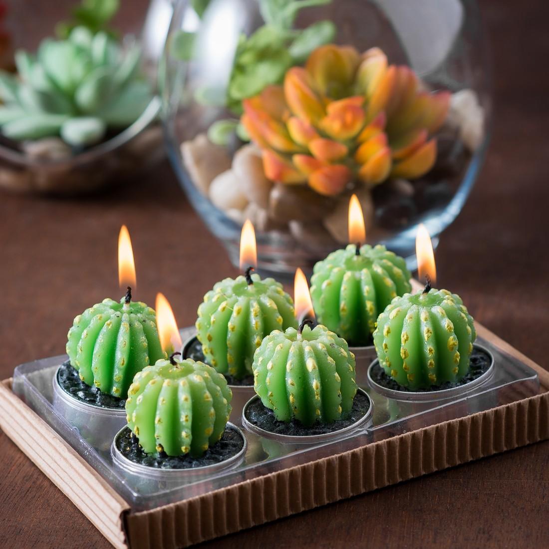 Barrel Cactus Tealights in Gift Box