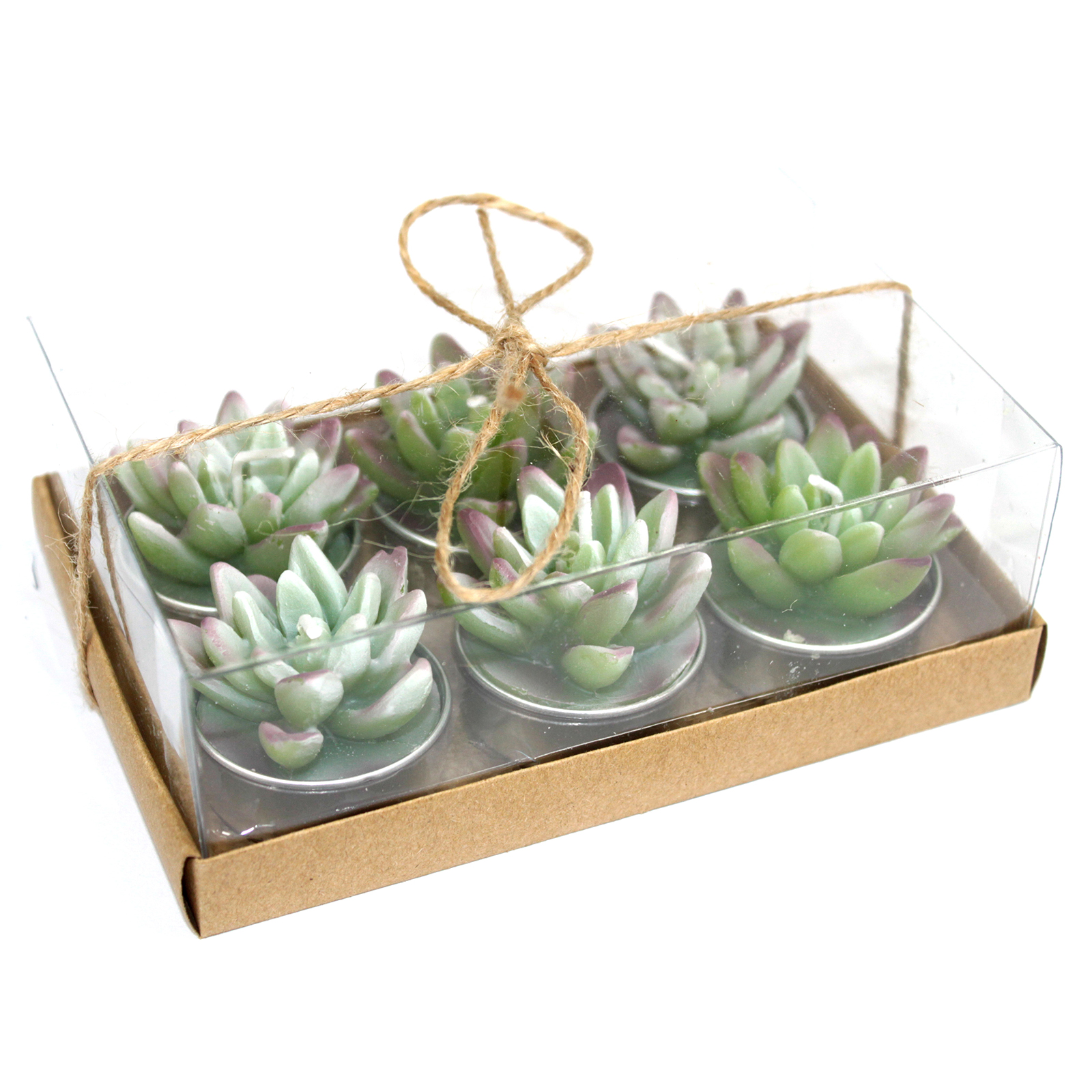 Agave Cactus Tealights in Gift Box