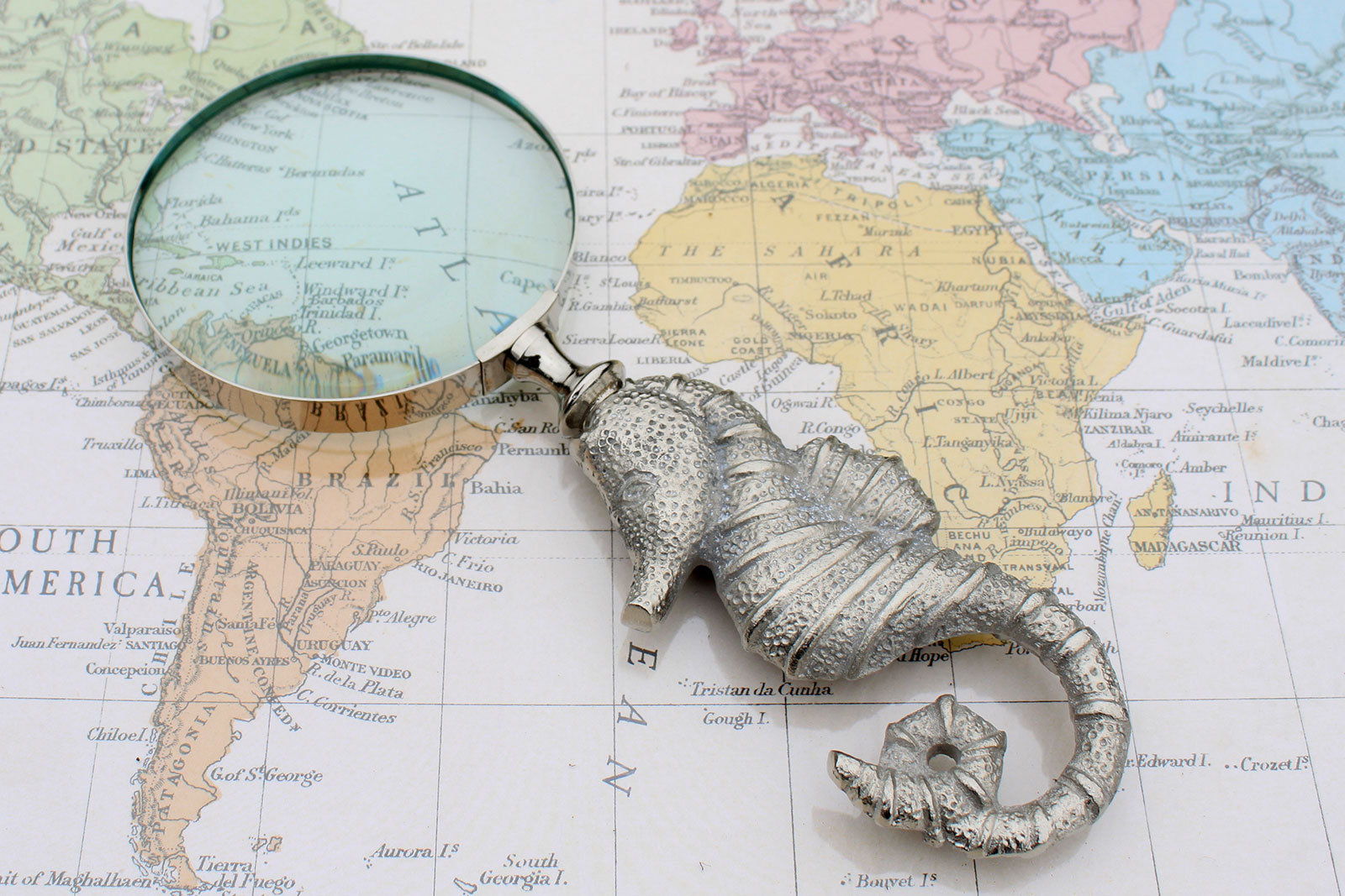 Vintage Magnifying Glasses - Seahorse