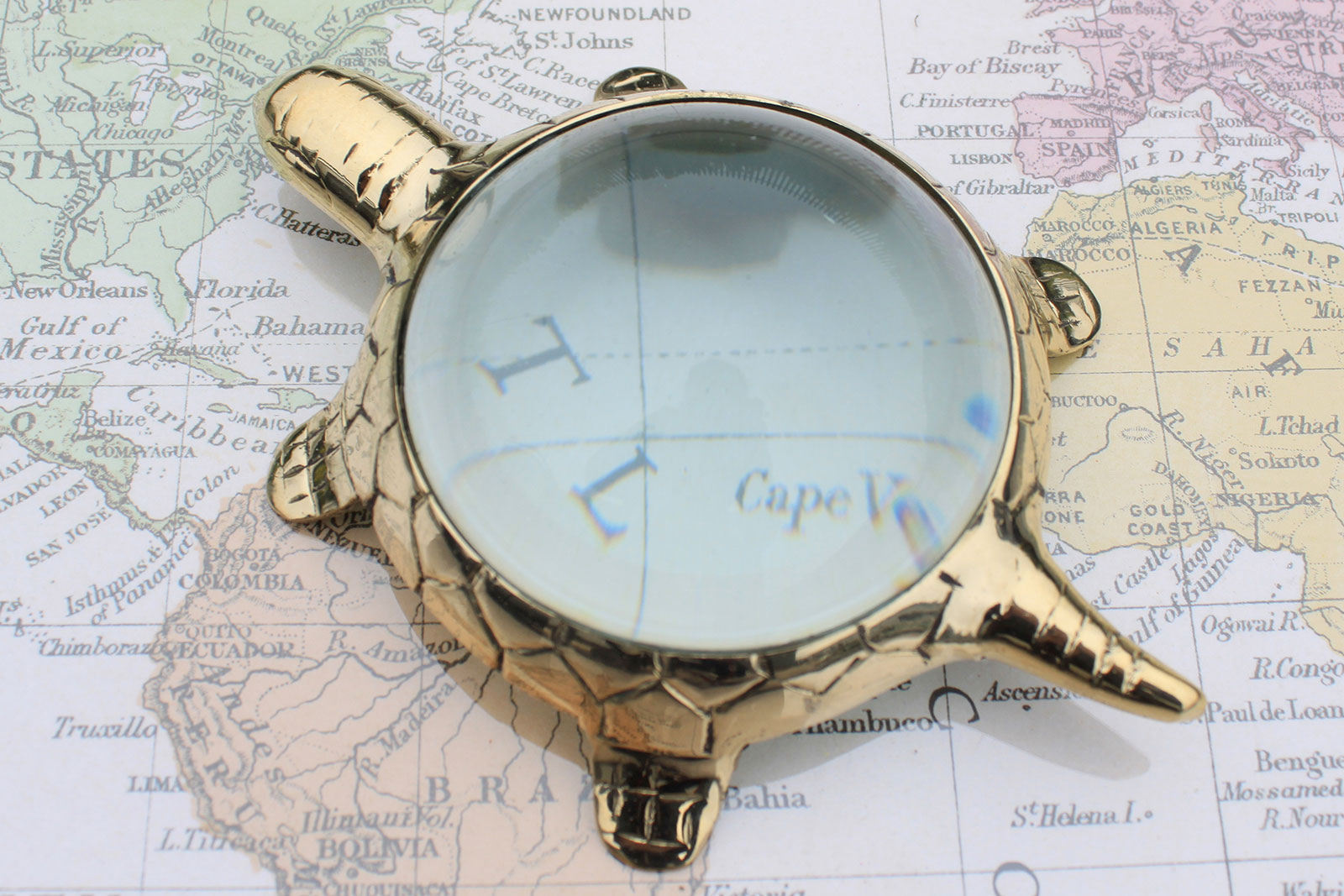 Vintage Magnifying Glasses - Table Turtle